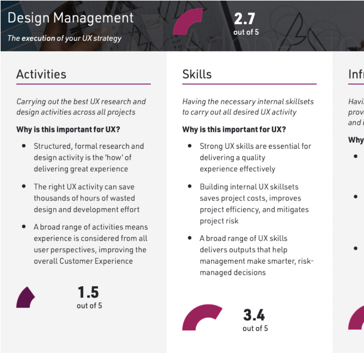 Sample of the Experience Assessment webpage output, showing a description of the Activities and Skills scales, a description of their importance, and example scores out of 5